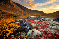 Autumn coloured valley and Malaya Belaya river, Khibiny mountains, Kola Peninsula, Russia
