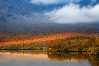 Autumn color and low cloud at Maliy Vudjavr Lake, Khibiny mountains, Kola Peninsula, Russia