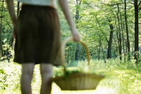 Rear view of young woman with basket of foraged wild herbs in forest, Vogogna, Verbania, Piemonte, Italy 11015289461| 写真素材・ストックフォト・画像・イラスト素材|アマナイメージズ