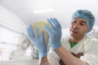 Worker hand making mozzarella ball in cheese factory 11015290551| 写真素材・ストックフォト・画像・イラスト素材|アマナイメージズ