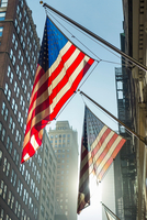American flags on flag poles in street, New York, USA