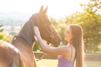Woman grooming horse 11015290854| 写真素材・ストックフォト・画像・イラスト素材|アマナイメージズ