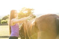 Woman grooming horse 11015290857| 写真素材・ストックフォト・画像・イラスト素材|アマナイメージズ