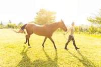Woman in field walking horse on tether 11015290871| 写真素材・ストックフォト・画像・イラスト素材|アマナイメージズ