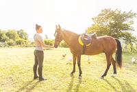 Woman in field stroking horse 11015290875| 写真素材・ストックフォト・画像・イラスト素材|アマナイメージズ