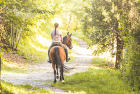 Rear view of woman riding horse on tree lined dirt track