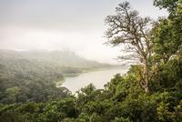 Elevated view of rainforest mist and sea, Wana Giri, Bali, Indonesia