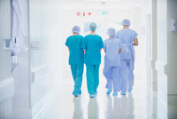Rear view of four medical staff wearing scrubs walking in hospital corridor