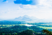 View from Lion Rock, Dambulla, Sri Lanka