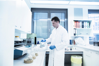 Scientist examining sample inside beaker in laboratory