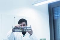 Scientist examining test tubes in rack