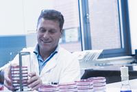 Scientist arranging petri dishes into rack