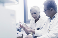 Scientists examining sample inside petri dish in laboratory