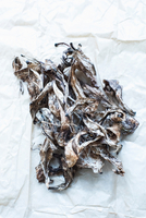 Petals from crocus flowers on paper 11015295303| 写真素材・ストックフォト・画像・イラスト素材|アマナイメージズ