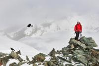 Man on top of snow covered mountain looking at bird in flight, Saas Fee, Switzerland 11015295715| 写真素材・ストックフォト・画像・イラスト素材|アマナイメージズ