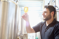 Worker in brewery inspecting beer at last stage of brewing
