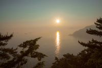 Sunset view on the sea, seen through trees, Busan, Korea