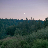 Crescent moon above forest, Ural, Russia