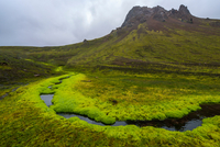 Green moss landscape at the Fjallabak area close to Landmannalaugar, Iceland