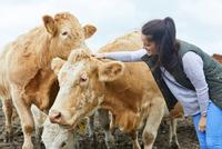 Woman on farm stroking cow 11015297925  写真素材・ストックフォト・画像・イラスト素材 アマナイメージズ
