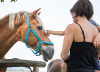 Mother and son stroking horse 11015298182| 写真素材・ストックフォト・画像・イラスト素材|アマナイメージズ