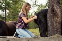 Girl kneeling to plait horse mane in forest, Sattelbergalm, Tyrol, Austria 11015298692| 写真素材・ストックフォト・画像・イラスト素材|アマナイメージズ