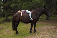 Girl lying bareback on horse in forest glade, Sattelbergalm, Tyrol, Austria 11015298693| 写真素材・ストックフォト・画像・イラスト素材|アマナイメージズ
