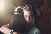 Girl hugging boston terrier dog 11015299019| 写真素材・ストックフォト・画像・イラスト素材|アマナイメージズ