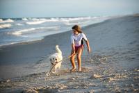 Young girl playing with dog on beach 11015299033| 写真素材・ストックフォト・画像・イラスト素材|アマナイメージズ