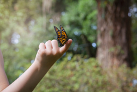 Girls holding monarch butterfly on finger