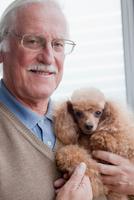 Senior man carrying pet dog at home 11015300365| 写真素材・ストックフォト・画像・イラスト素材|アマナイメージズ
