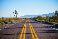 Desert highway, Organ Pipe Cactus National Monument, Arizona, USA