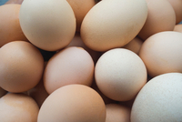 Close up of fresh eggs