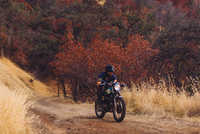Man riding motorbike, Sequoia National Park, California, USA