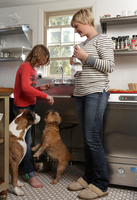 Mother and daughter in kitchen, daughter feeding pet dogs a treat 11015301851| 写真素材・ストックフォト・画像・イラスト素材|アマナイメージズ