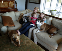 Mother and daughters sitting on sofa with pets dogs, watching TV together 11015301855| 写真素材・ストックフォト・画像・イラスト素材|アマナイメージズ