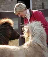Mid adult woman outdoors, offering treats to ponies 11015301860| 写真素材・ストックフォト・画像・イラスト素材|アマナイメージズ