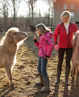 Mother and daughter outdoors, daughter giving instructions to pony 11015301878| 写真素材・ストックフォト・画像・イラスト素材|アマナイメージズ