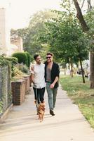 Young male couple walking dog on suburban sidewalk 11015302038| 写真素材・ストックフォト・画像・イラスト素材|アマナイメージズ