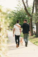 Rear view of young male couple walking dog on suburban sidewalk