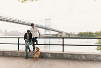 Young male couple on riverside looking at dog, Astoria, New York, USA