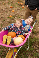 Man with two daughters sitting in wheelbarrow in pumpkin field