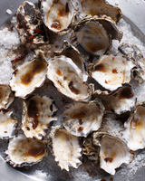 Oyster shells on sea salt 11015303175| 写真素材・ストックフォト・画像・イラスト素材|アマナイメージズ