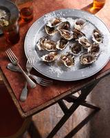 Oysters on sea salt 11015303189| 写真素材・ストックフォト・画像・イラスト素材|アマナイメージズ