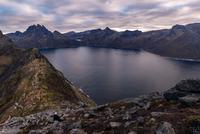 Woman looks out to sea from Segla Peak on Senja Island in autumn, Arctic Norway 11015303686| 写真素材・ストックフォト・画像・イラスト素材|アマナイメージズ