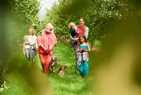 Family walking dog in apple orchard 11015304102| 写真素材・ストックフォト・画像・イラスト素材|アマナイメージズ