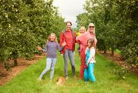 Family walking dog in apple orchard 11015304103| 写真素材・ストックフォト・画像・イラスト素材|アマナイメージズ