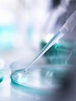 Pipetting a sample into a petri dish during a scientific experiment in a laboratory 11015304177| 写真素材・ストックフォト・画像・イラスト素材|アマナイメージズ