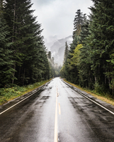 Wet highway in Strathcona-Westmin Provincial Park, Vancouver Island, British Columbia, Canada 11015304911| 写真素材・ストックフォト・画像・イラスト素材|アマナイメージズ