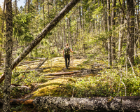 Female hiker in forest at Comox Lake, Coutenay, Vancouver Island, British Columbia, Canada